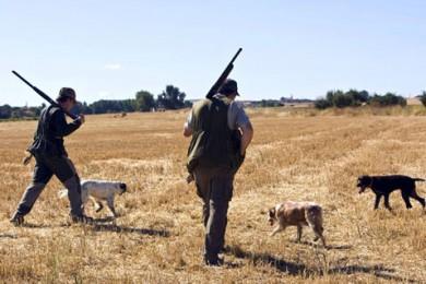 Cazadores y perros